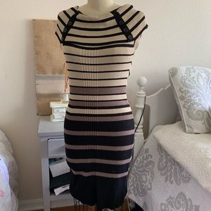 Pink Rose Striped Knit Dress